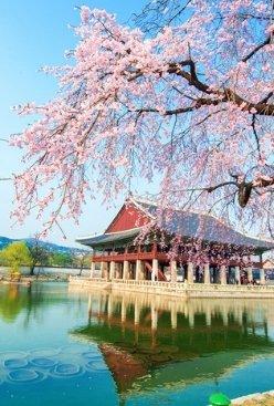 International Schools of Seoul